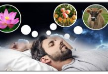 find out what 5 things appear in dreams that are considered ominous » Trishul News Gujarati Breaking News