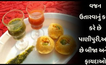 Panipuri works for weight loss and offers many other benefits » Trishul News Gujarati Breaking News