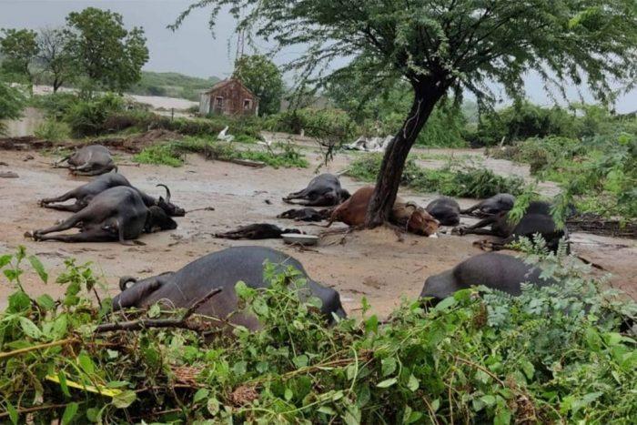 kutchh saurastra heavy rain in jamnagar1 1024x683 1 - Trishul News Gujarati Breaking News gujarat, અતિ ભારે વરસાદ, ગુજરાતમાં વરસાદ, ધમાકેદાર વરસાદ, વરસાદ આગાહી, સૌરાષ્ટ્રમાં વરસાદ