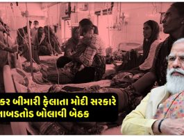 serotype 2 dengue annoys people in 11 states of the country1 » Trishul News Gujarati Breaking News