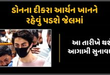 mumbai drug bust live updates no relief for aryan khan order on bail plea deferred till oct 20 trishulnews - Trishul News Gujarati Breaking News